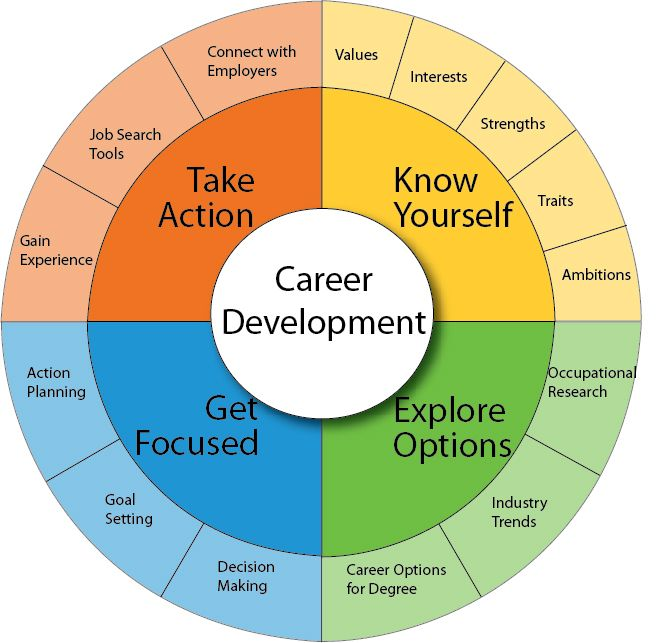 career-development-wheel-career-cliff